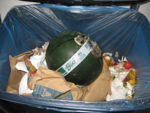 "This is my trash can, almost full this morning. As you can see, this gorgeous little organic watermelon went to waste in favor of the quick and easy ""bagged"" meal underneath it. This is reality."